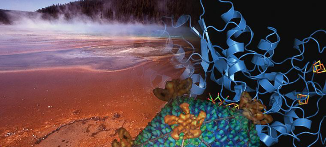 Image of a Yellowstone hotspring with a digitized version of the microbes and thermophiles that live within.