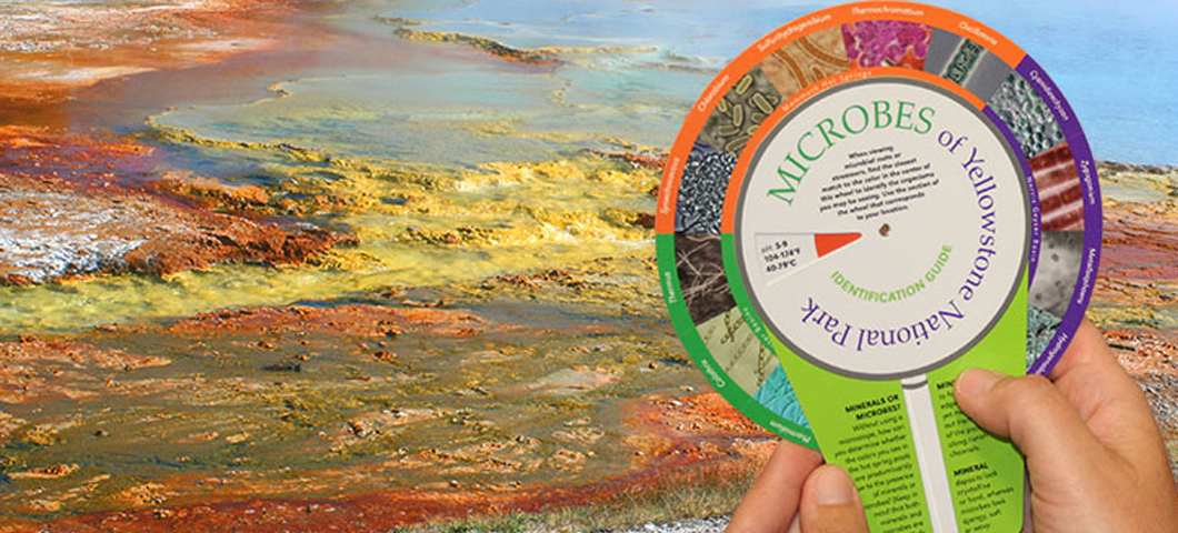 Image of thermal hot spring and color wheel that is used to determine what type of microbes reside in the spring.