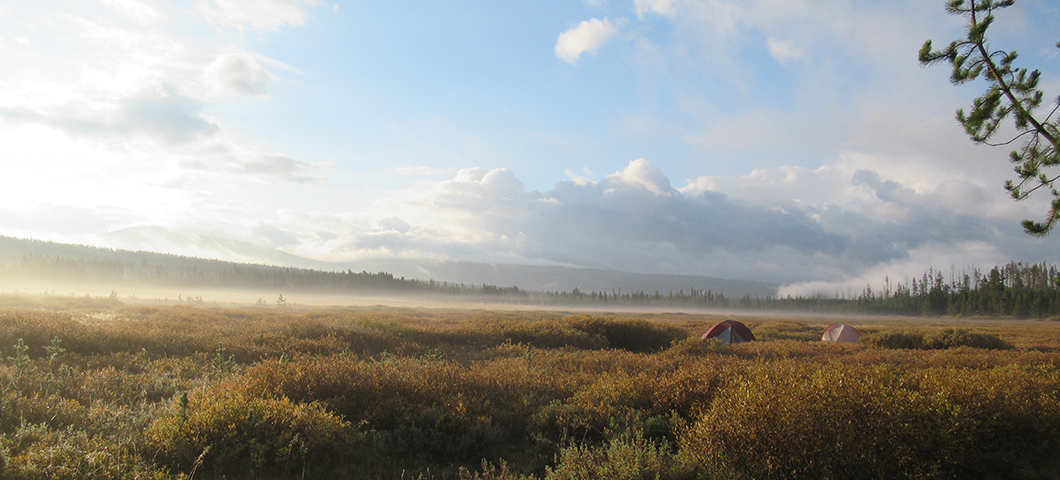 Two tents are laid out in an open field with the dusk light and mist.